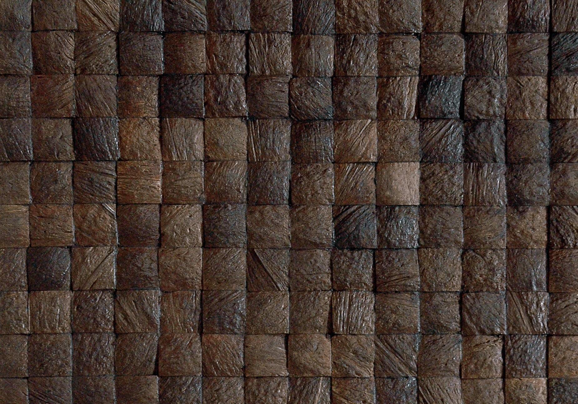 donkerbruine kokosnoot Mbaru Niang coco grain espresso uit de Oulanka Forest collectie