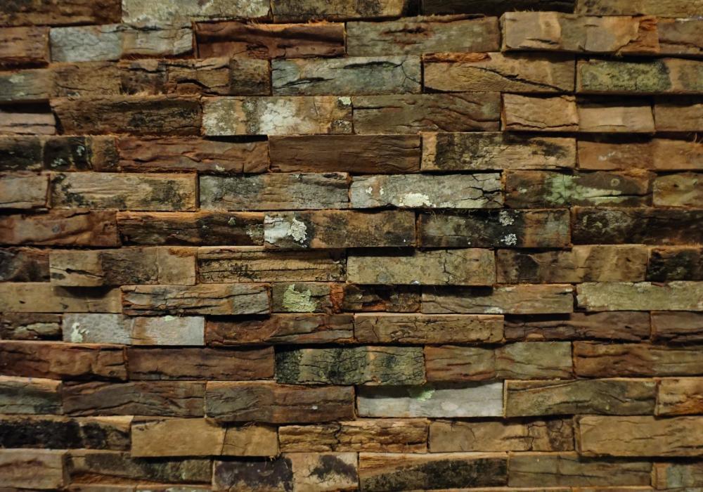 100225 Sanur palm bark